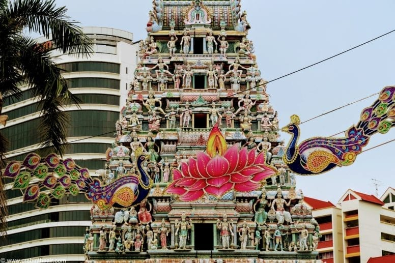 little india singapore tour