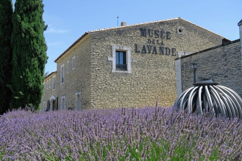 lavender museum provence france
