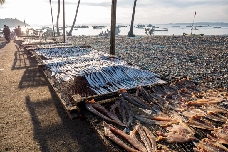 fisherman village dry fish
